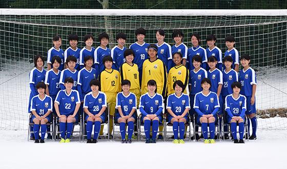 一般社団法人日本女子サッカーリーグ Japan Women's Football League                  チーム
